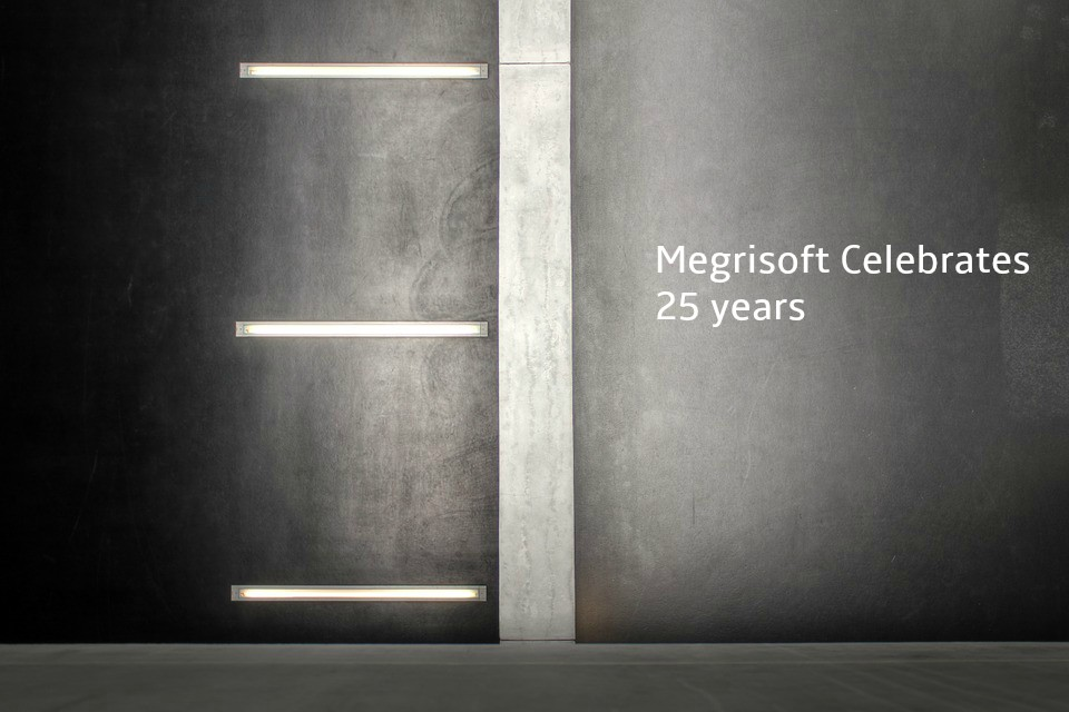 Today's Megrisoft Celebrates The Company's 25th Birthday