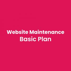 website-maintenance-basic